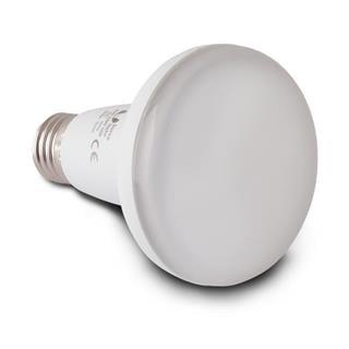 E27 - 10W, R80, 20 LED SMD 2835 (230V) TEPLÁ BÍLÁ